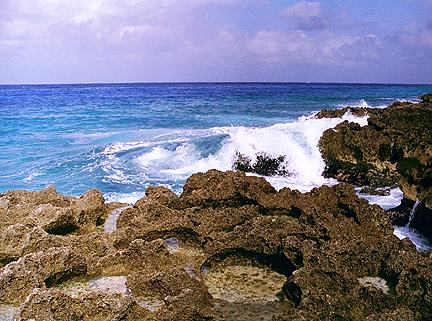 Photograph of coral rock shore