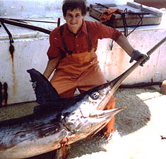 Large swordfish on the deck of a Viking Village longliner