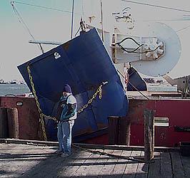 Dyrsten\u0027s trawl door image & Otter trawling page